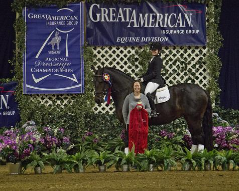 Friesian Sporthorse Champion