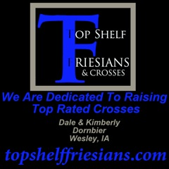 Top Shelf Friesians
