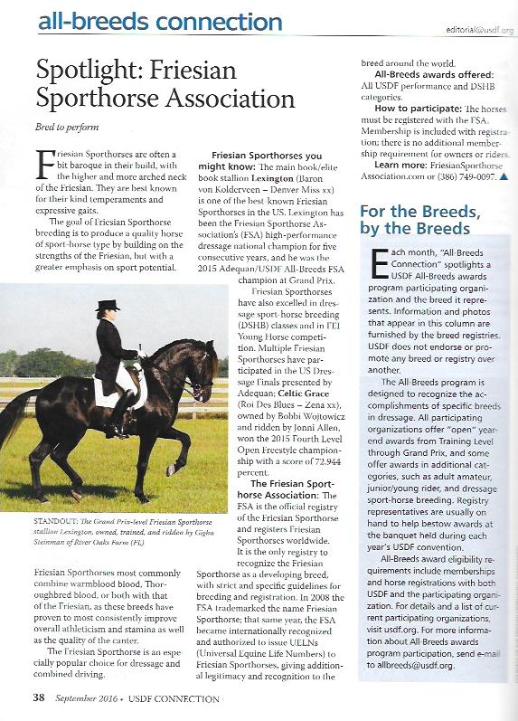 Friesian Sporthorse article