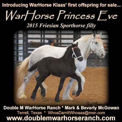 Double M WarHorse Ranch